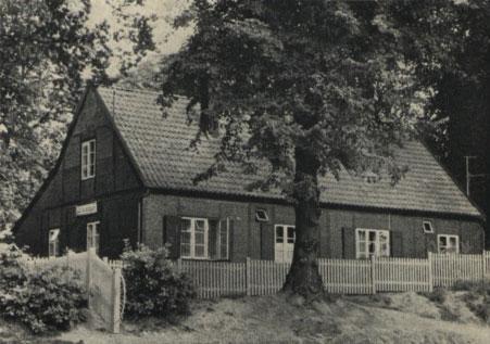 Im Vordergrund ist mittig ist ein Baum mit vielen Blättern zu sehen, der auf einem kleinen Hügel gepflanzt wurde. Dahinter steht, weiß umzäunt, das kleine Fachwerkhaus Schönbrunn. Links sind hinter sowie vor dem Zaun Büsche und Bäume zu sehen.